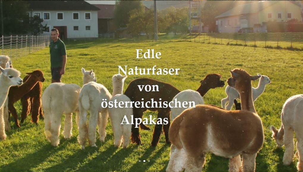 alpakazucht rauscher oberösterreich